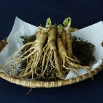 The Power of Ginseng